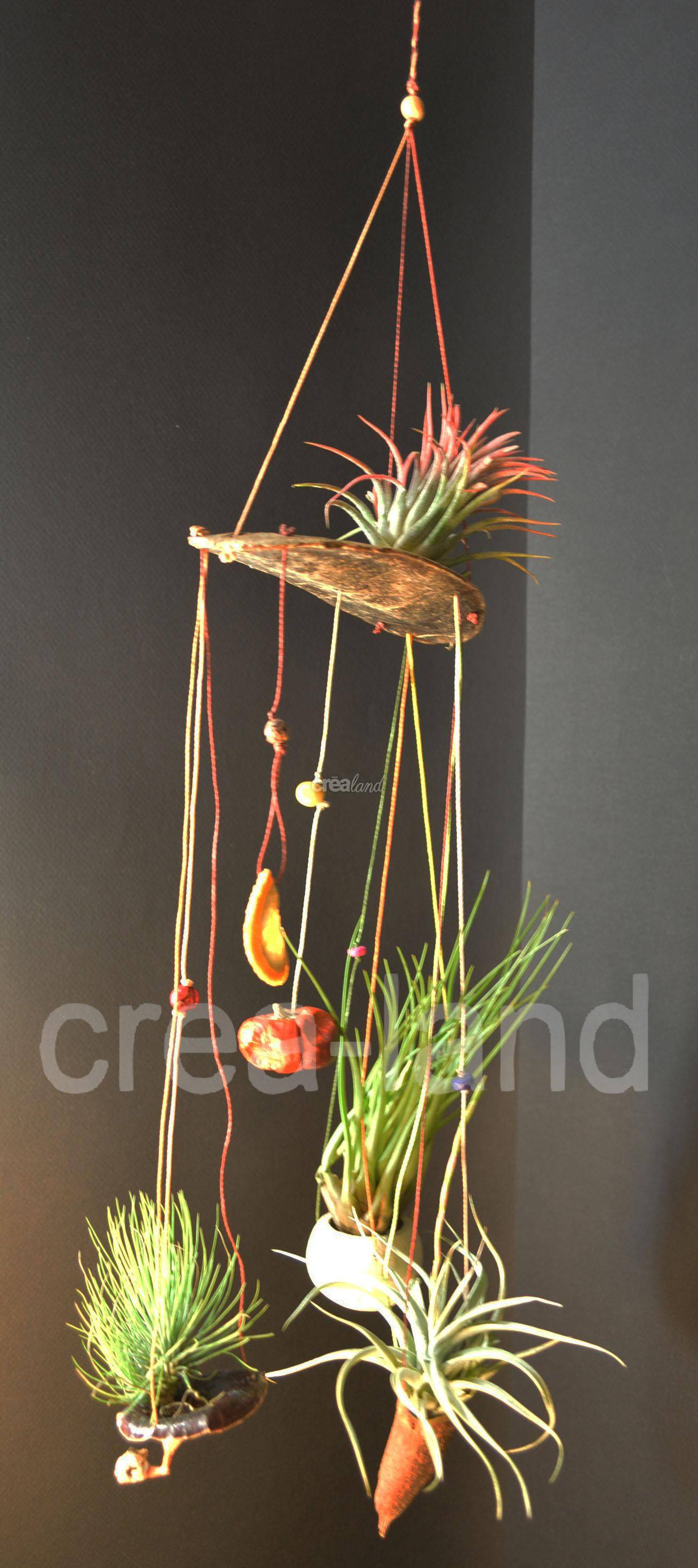 jardin suspendu un cadeau original. Black Bedroom Furniture Sets. Home Design Ideas